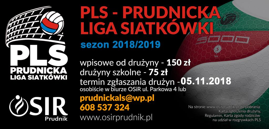 Siatkówka 2019.png