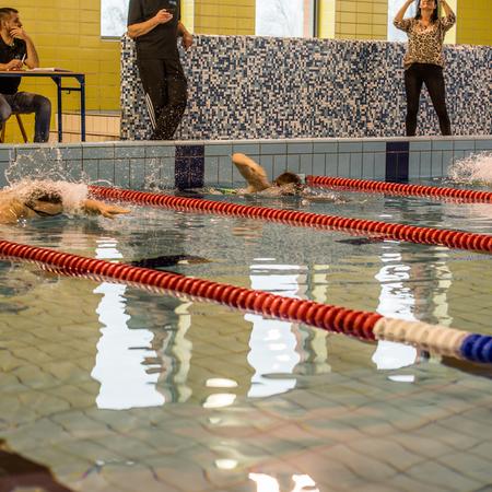 Galeria 3. Zawody Pływackie Szkół Podstawowych o Puchar Burmistrza Prudnika